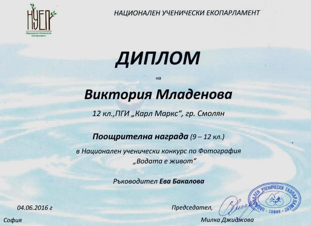 Dip-V_Mladenova (Medium)